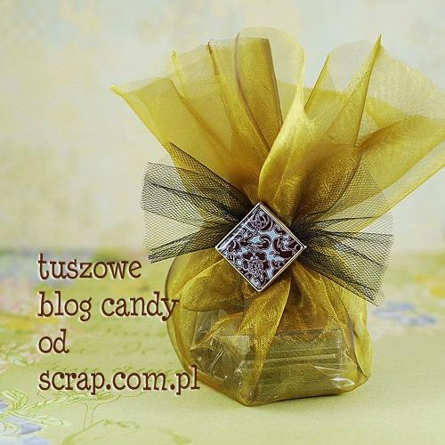 blog candy od scrap.com