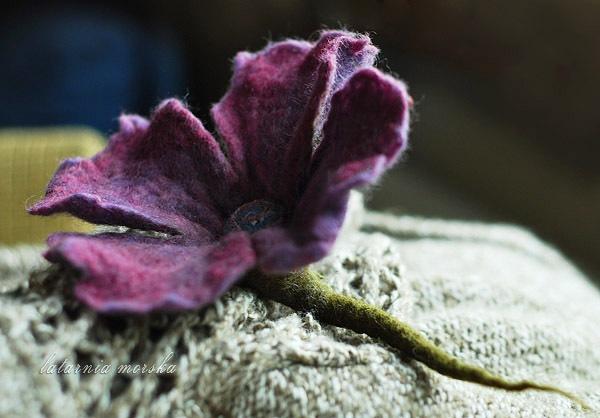 kwiat_filcowy2
