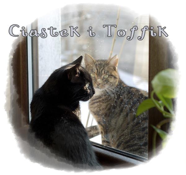 Toffik&Ciastek
