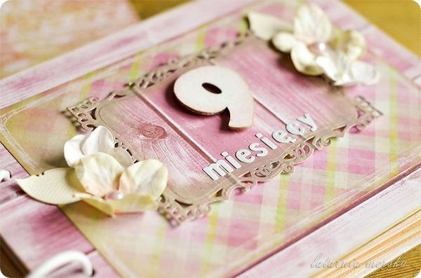 pamiętnik_ciążowy_2