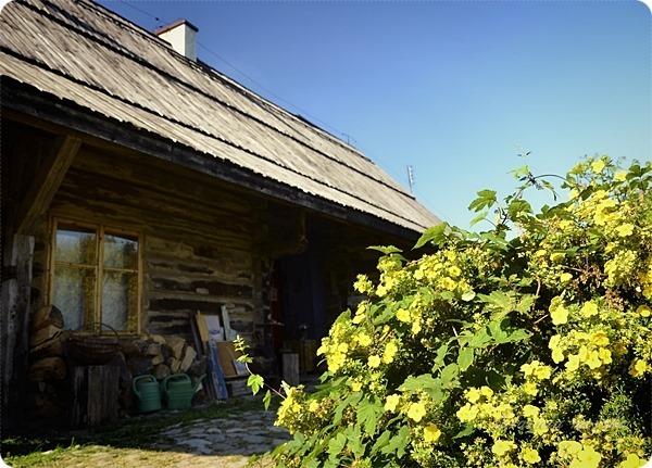 Wiejskie_warsztaty_alchemiczne_Lawendowe_Pole_13
