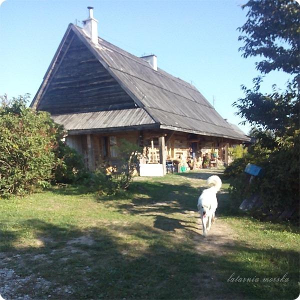 Wiejskie_warsztaty_alchemiczne_Lawendowe_Pole_29