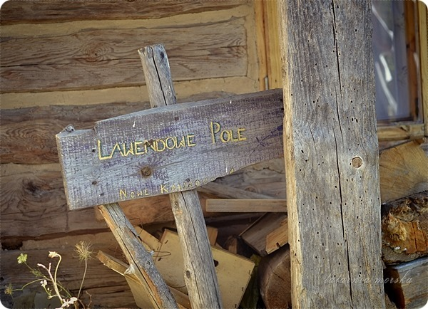 Wiejskie_warsztaty_alchemiczne_Lawendowe_Pole_3
