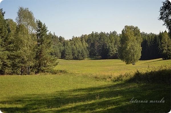 Wiejskie_warsztaty_alchemiczne_Lawendowe_Pole_7