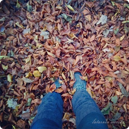 woods_11_11_20149_