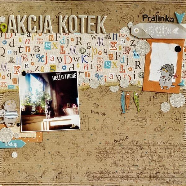 akcja_kotek_Pralinka