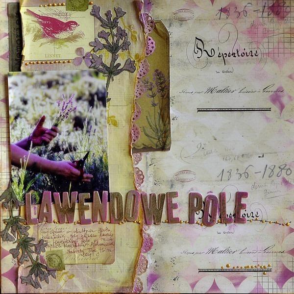 Lawendowe_Pole_1