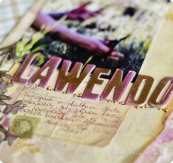 Lawendowe_Pole_3
